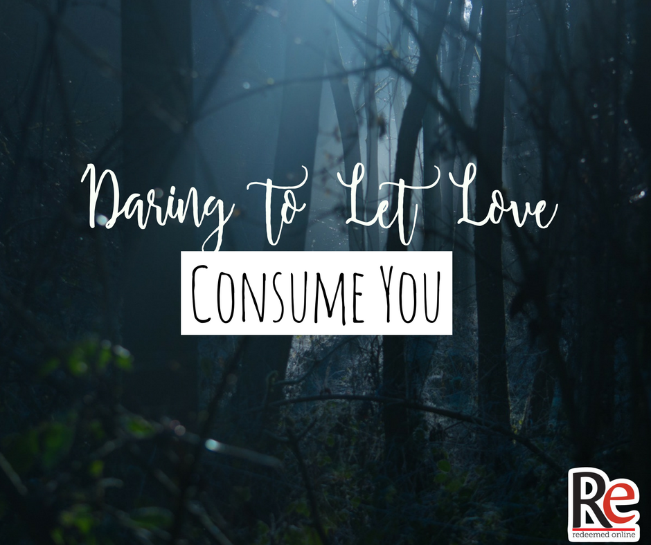 Daring to Let Love Consume You Dave VanVickle